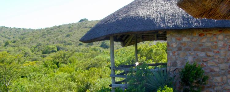 Lalibela Private Game Reserve