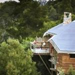 tsala-treetop-lodge-05