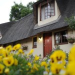 granny-mouse-country-house-06