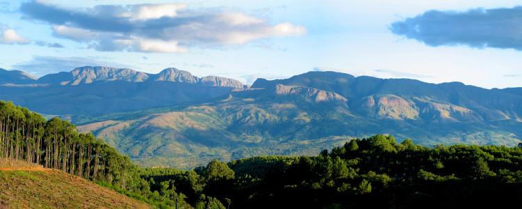 Limpopo Region